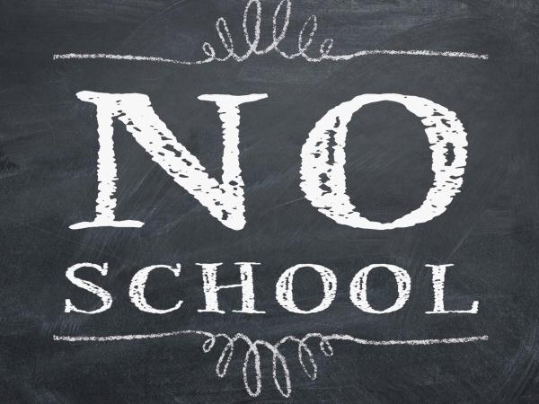 NO SCHOOL for Elementary & Middle School. (High school regular school day)