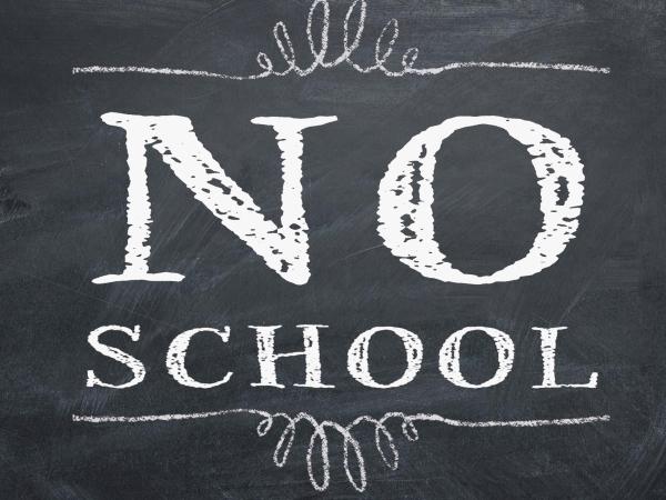 No School- Teacher in Service