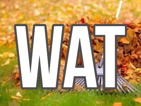 WAT Pledge Deadline for prizes